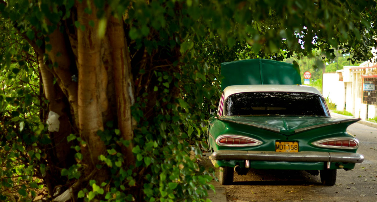 gallery-car-2