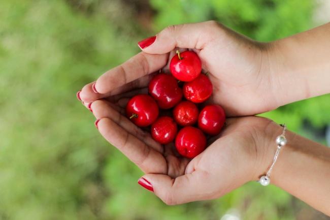 2232355-cherries-650-1464722407