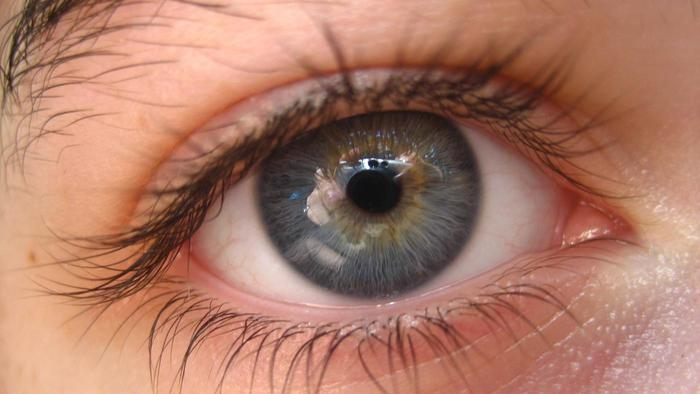 rare-gray-eyes_3f0b591f87366d54